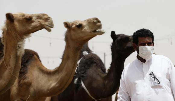 A man wearing a mask looks on as he stands in front of camels at a camel market in the village of al-Thamama near Riyadh May 11, 2014. REUTERS/Faisal Al Nasser