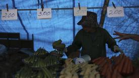 Vendedor de legumes em feira livre no bairro de Vila Madalena, São Paulo. A inflação oficial brasileira desacelerou a 0,46 por cento em maio beneficiada pelos preços de alimentos e transportes. 9/11/2013. REUTERS/Nacho Doce