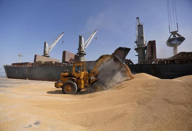 A dozer unloads wheat next to a ship at Mundra Port in Gujarat April 1, 2014.  REUTERS/Amit Dave/Files