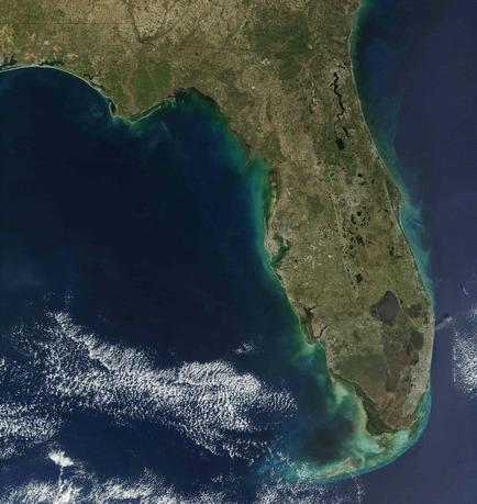 A major red tide bloom extends more than 100 miles along Florida's Gulf coastline, and reaches more than 30 miles off shore in this handout NASA true-color image acquired December 22, 2001 by the Moderate-resolution Imaging Spectroradiometer (MODIS), flying aboard NASA's Terra satellite, courtesy of Jacques Descloitres, MODIS Land Rapid Response Team at NASA. REUTERS/Jacques Descloitres, MODIS Land Rapid Response Team at NASA