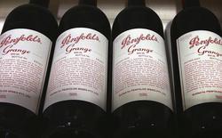 TPG Capital Management a fait une proposition de 3,1 milliards de dollars (2,3 milliards d'euros) pour acquérir le producteur australien de vin Treasury Wine Estates également convoité par son grand rival KKR & Co,selon une source proche du dossier. /Photo prise le 4 août 2014/REUTERS/David Gray