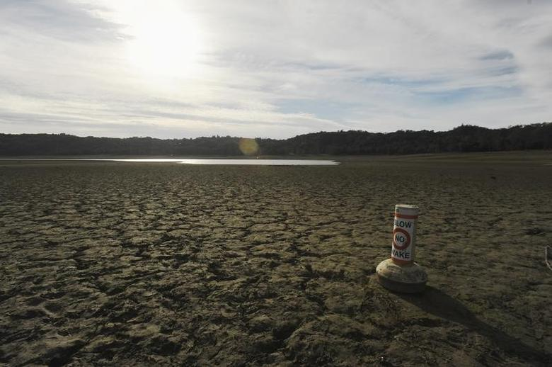 A buoy meant for boaters rests on the dry bed of Lake Mendocino, a key Mendocino County reservoir, in Ukiah, California February 25, 2014.    REUTERS/Noah Berger