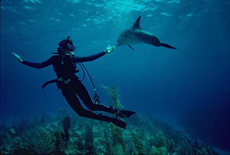"""Dr. Sylvia Earle in a scene from the Netflix documentary """"Mission Blue."""" REUTERS/Netflix"""