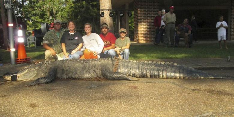 John and Amanda Stokes, brother-in-law Kevin Jenkins and children Savannah and Parker pose with an American alligator measuring 15 feet long and weighing 1,011.5 lbs, a new state record, hauled in from the waters near Millers Ferry, Alabama in this handout photo provided by the Alabama Department of Conservation and Natural Resources, August 18, 2014.   REUTERS/Alabama DCNR/Handout via Reuters