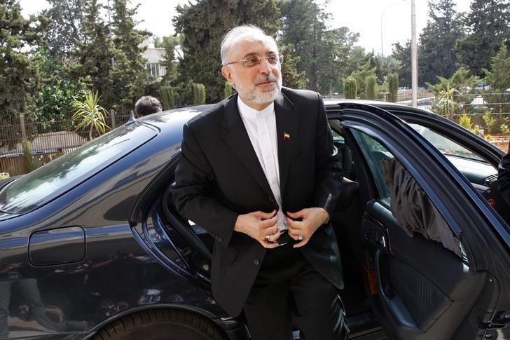 Iranian Foreign Minister Ali Akbar Salehi reacts upon his arrival to attend the official opening ceremony for the new headquarters of the Iranian embassy in Amman, May 7, 2013. REUTERS/Majed Jaber