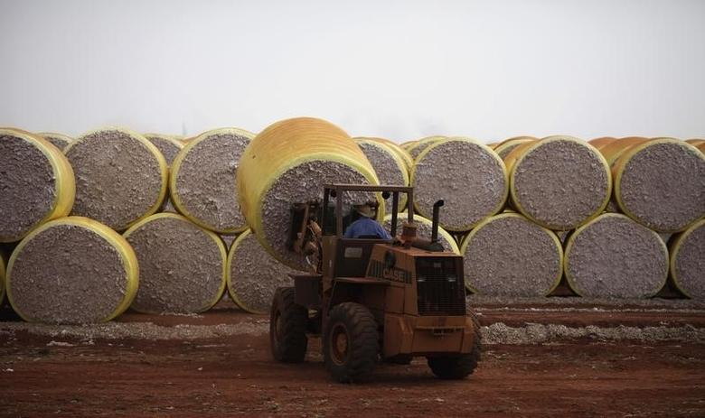 A worker stacks bundles of cotton at a farm beside the MS-306 road in Chapadao do Sul, Mato Grosso do Sul state September 18, 2012.    REUTERS/Nacho Doce