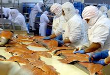 Imagen de archivo de trabajadores en una planta procesadora de salmón en Puerto Ibañez. 24 mayo, 2006. La firma salmonera chilena AquaChile informó el jueves que acordó adquirir una participación controladora de su rival Invermar, mediante un acuerdo sobre sus acreencias y la suscripción de un aumento de capital. . Reuters