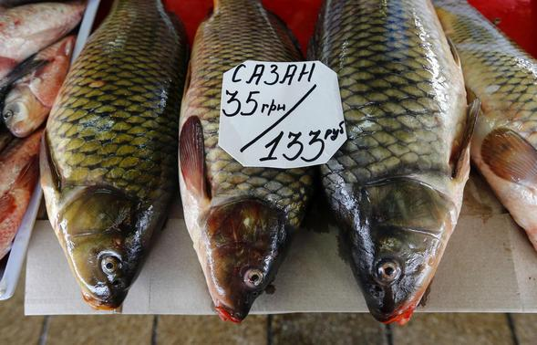 A tag showing the price of fish in Ukrainian hryvnia (top) and Russian roubles is seen on display at a market in the Crimean city of Simferopol, in this March 26, 2014 file photo.   REUTERS-Shamil Zhumatov-Files