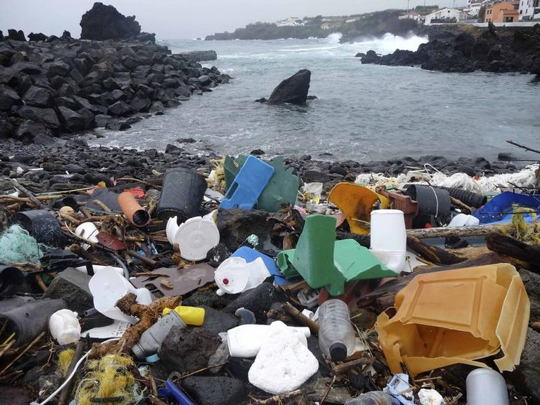 A beach in the Azores is pictured littered with plastic garbage, in this undated handout photo obtained by Reuters on December 9, 2014. REUTERS/Marcus Eriksen/Handout via Reuters