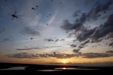 Un atardecer en la península de Yamal, en el círculo polar ártico ruso, ago 4 2009. Rusia anunció ayuda estatal para un gran proyecto energético el miércoles en un esfuerzo por fortalecer a empresas estratégicas, así como también a la confianza pública en su sistema bancario durante una crisis económica agravada por sanciones occidentales.  REUTERS/Denis Sinyakov