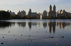 Ducks make their way in the water as buildings are reflected on the surface of the reservoir in Central Park on an autumn day in New York November 10, 2014.   REUTERS/John Schults
