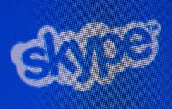 Logotipo do Skype no website da companhia. 10/05/2011 REUTERS/Denis Balibouse
