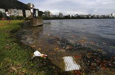 Tourists take pictures on the banks of Rodrigo de Freitas Lagoon in Rio de Janeiro August 13, 2014. REUTERS/Ricardo Moraes