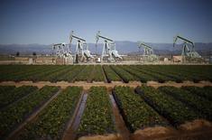 Станки-качалки у клубничного поля в Окснарде, Калифорния 24 февраля 2015 года. Запасы нефти в США выросли за неделю, завершившуюся 20 февраля, на 8,4 миллиона баррелей до 434,07 миллиона баррелей, сообщило Управление энергетической информации (EIA) в среду. REUTERS/Lucy Nicholson