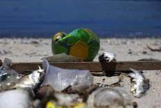 Lixo é encontrado na Baía de Guanabara, no Rio de Janeiro. 24/02/2015.   REUTERS/Ricardo Moraes