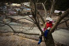 A scarecrow sits on a tree in the mountain village of Nagoro on Shikoku Island in southern Japan February 24, 2015.  REUTERS/Thomas Peter