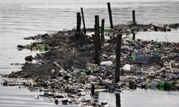 Rubbish covers the banks of Cunha channel, which flows into Guanabara Bay, in Rio de Janeiro March 20, 2015. The World Water Day is held on March 22.  REUTERS/Sergio Moraes