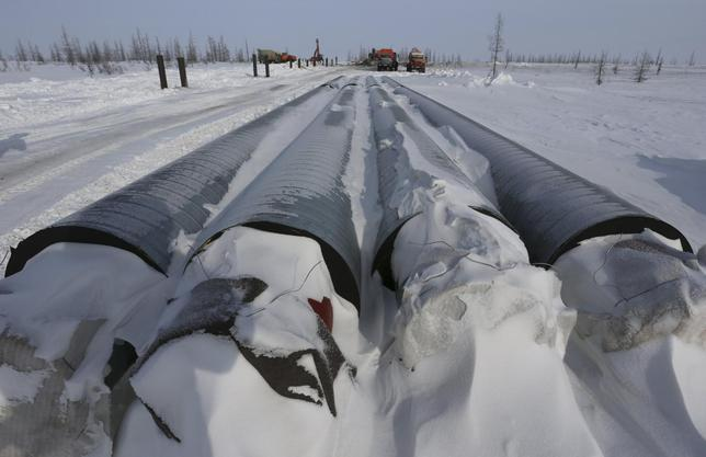 Pipelines to be laid to transport oil to Vankor are seen at the Rosneft company owned Suzunskoye oil field, north from the Russian Siberian city of Krasnoyarsk, March 26, 2015.  REUTERS/Sergei Karpukhin