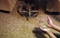 Trabalhador manuseia grãos de café em fábrica em Espírito Santo do Pinhal. 18/05/2015 REUTERS/Nacho Doce