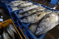 Unos pescados a la venta en Villa María del Triunfo, a las afueras de Lima, mar 30 2015. La actividad económica de Perú anotó una importante recuperación en abril al crecer un 4,25 por ciento interanual, la tasa más alta de los últimos 13 meses, debido a un fuerte empuje del clave sector minero y pesquero. REUTERS/Mariana Bazo