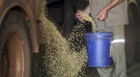 Trabalhador coletando amostras de grãos de soja, em Mato Grosso.  06/02/2013   REUTERS/Paulo Whitaker