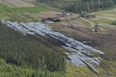 Emulsion, a mixture of bitumen, water and sand, lies on the surface on a feeder pipeline corridor near the Nexen Energy's Long Lake oilsands facility south of Fort McMurray, Alberta July 17, 2015 in this photo courtesy of CBC. REUTERS/Terry Reith/CBC