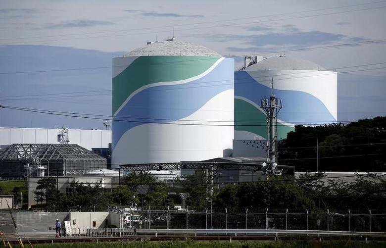 No.1 (L) and No.2 reactor buildings are seen at Kyushu Electric Power's Sendai nuclear power station in Satsumasendai, Kagoshima prefecture, Japan, July 8, 2015. REUTERS/Issei Kato