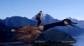 Canadian independent parliamentary candidate Wyatt Scott appears riding on the back of a Canada goose in a still image from a promotional video provided by his campaign office. REUTERS/Wyatt Scott/Handout