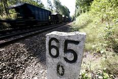 A train travels in an area where a Nazi train is believed to be at, in Walbrzych, southwestern Poland August 30, 2015. REUTERS/Kacper Pempel