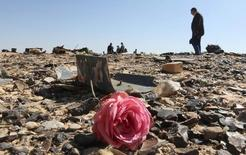 Цветок на обломках рухнувшего в Египте самолета российской авиакомпании. 1 ноября 2015 года. Вашингтон предложил помочь российским и египетским властям определить причину крушения аэробуса над Синайским полуостровом. REUTERS/Mohamed Abd El Ghany