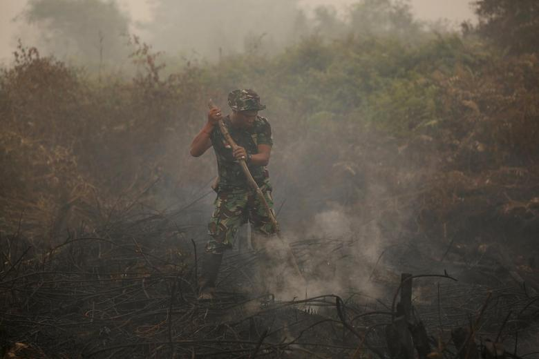 An Indonesian soldier checks on a peat land fire near Palangkaraya, central Kalimantan, Indonesia October 28, 2015.  REUTERS/Darren Whiteside