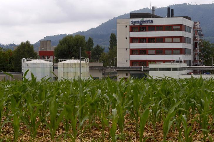 Corn grows on a field in front of a plant of Swiss agrochemicals maker Syngenta in the nortern Swiss town of Stein July 23, 2015.    REUTERS/Arnd Wiegmann