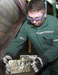 Работник демонстрирует золотой слиток в ходе фотосъемки на месторождении Кумтор в Киргизии 1 июня 2011 года. Рост экономики Киргизии в 2015 году замедлился до 3,5 процента с 4,0 годом ранее на фоне снижения добычи золота, сообщил Нацстаткомитет в четверг. REUTERS/Vladimir Pirogov