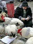 Мужчина продает куриц на рынке в Кишиневе 5 марта 2005 года. Инфляция в Молдавии в 2015 году ускорилась до 13,6 процента с 4,7 процента годом ранее и впервые почти за десятилетие превысила 10 процентов на фоне политического кризиса, стагнации в экономике и сокращения переводов от трудовых мигрантов. STR New / Reuters