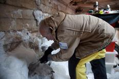 Mawson's Huts Foundation conservator, Peter Maxwell, chipping ice from the interior of the workshop section of Mawson's Hut at Cape Denison in Antarctica in this December 11, 2015 handout photo. REUTERS/David Killick/Mawsons Huts Foundation/Handout via Reuters