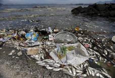 Peixes mortos e lixo na Baía de Guanabara. 13/1/2016. REUTERS/Ricardo Moraes