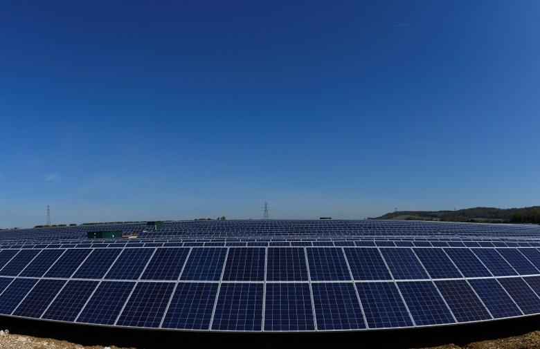 Solar panels are seen in fields near Andover in southern England May 3, 2013. REUTERS/Toby Melville