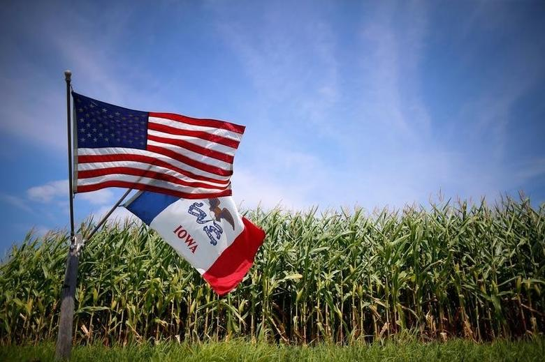 A U.S. and Iowa state flags are seen next to a corn field in Grand Mound, Iowa, United States, August 16, 2015.  REUTERS/Jim Young