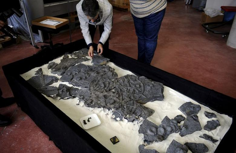 A fossil of a Ichthyosaur is seen at the Jurassic Museum of Asturia in Colunga, northern Spain, in this file photo taken November 6, 2015. Scientists on Tuesday released research which attributed the ichthyosaurs extinction 94 million years ago to the combination of global warming and their own failure to evolve swiftly enough.  REUTERS/Eloy Alonso/Files