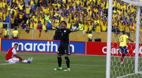 Goleiro do Paraguai Villar em jogo contra o Equador.  24/03/16.  REUTERS/Kevin Granja
