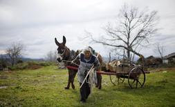 Mariana Teixeira pulls of a cart with firewood in Povoa de Agracoes, near Chaves, Portugal April 18, 2016. REUTERS/Rafael Marchante