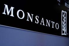 La farmacéutica alemana Bayer está explorando lanzar una oferta de compra por el gigante estadounidense de semillas Monsanto, según informó la agencia Bloomberg citando personas familiarizadas con el asunto.  En la imagen, el logo de Monsanto en una pantalla con la cotización de la empresa en la Bolsa de Nueva York, el 9 de mayo de 2016. REUTERS/Brendan McDermid