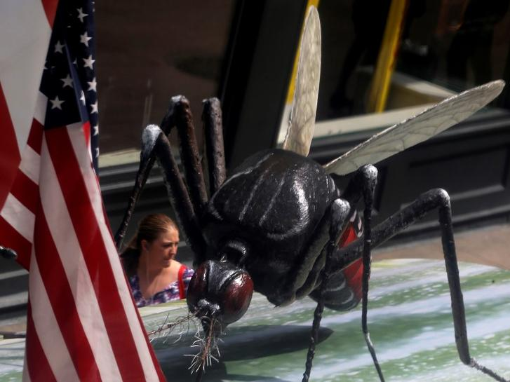 House approves $622 million to combat Zika virus | Reuters