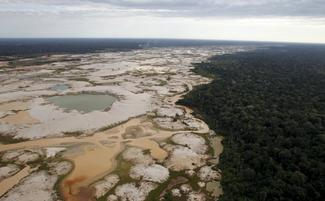 The scourge of illegal gold mining