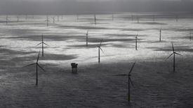 El consejo de ministros alemán aprobó el miércoles las reformas a la ley de energías renovables del país, con vistas a frenar el crecimiento y controlar los costes de las fuentes de energía verdes. En la imagen, un parque eólico marino en aguas de la isla de Amrum, Alemania, el 4 de septiembre de 2015. REUTERS/Morris Mac Matzen