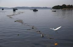 Detritos flutuam na Baía de Guanabara, onde acontecem as competições da Olimpíada do Rio 07/08/2016   REUTERS/Pilar Olivares