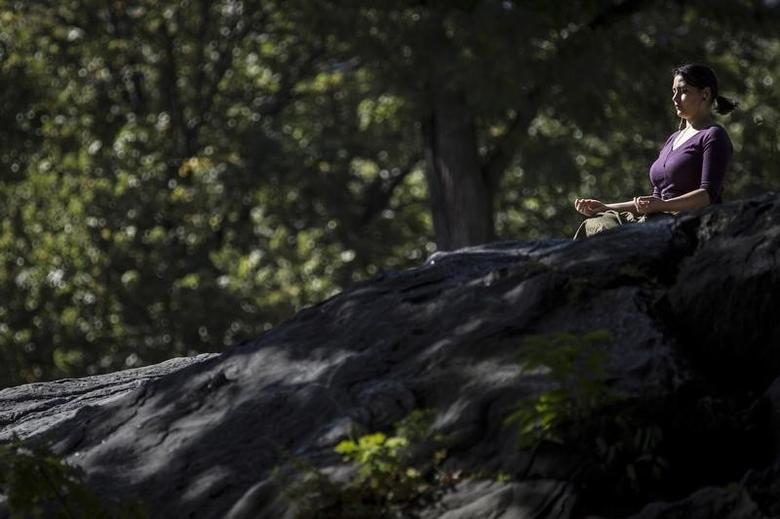 A woman sits on a rock in the mid-afternoon sun and meditates in Central Park in the Manhattan borough of New York October 20, 2015.    REUTERS/Carlo Allegri