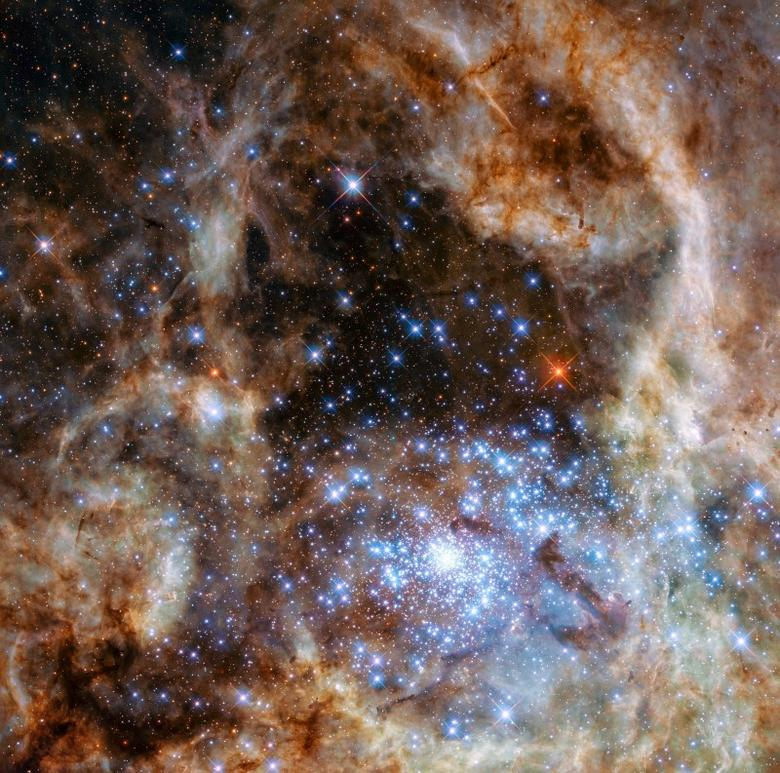 The central region of the Tarantula Nebula in the Large Magellanic Cloud is seen in an undated image taken by the NASA/ESA Hubble Space Telescope released March 17, 2016. REUTERS/NASA/ESA/P Crowther (University of Sheffield)/Handout via Reuters