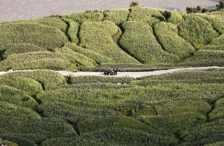 File picture of a truck carrying villagers drives past on a road as seen from a bunker of U.S. soldiers from Task Force ''No Fear'' 3rd Platoon, Alpha Company, 2-27 Infantry in Outpost Bari Alai in Kunar, Afghanistan September 14, 2011.    REUTERS/Erik De Castro