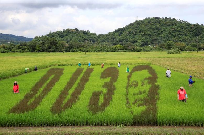 An artwork featuring the image of Philippine President Rodrigo Duterte with the letters D U and the number 3, a word play on the President's surname ''DU30'', is seen on a rice paddy in Los Banos city, Laguna province, south of Manila. REUTERS/Romeo Ranoco